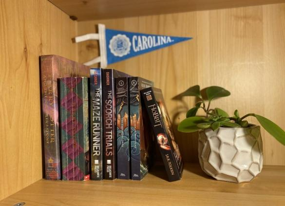 """Books on a shelf.  Photo by Emily Pack of """"The Daily Tar Heel."""""""