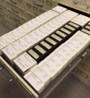 One of many drawers of microfilm in the Carolina Room